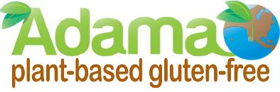 Teal scott 39 s blog surprise january 05 2014 09 40 for Adama vegan comfort cuisine